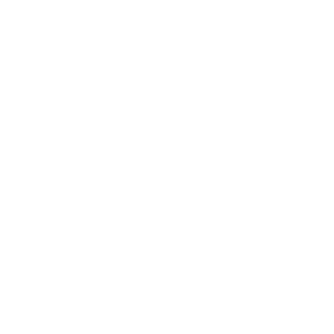 NexoquimicaB300